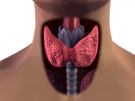 Воспаление щитовидной железы – симптомы